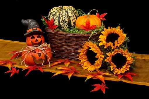 autumn-20461__340.jpg